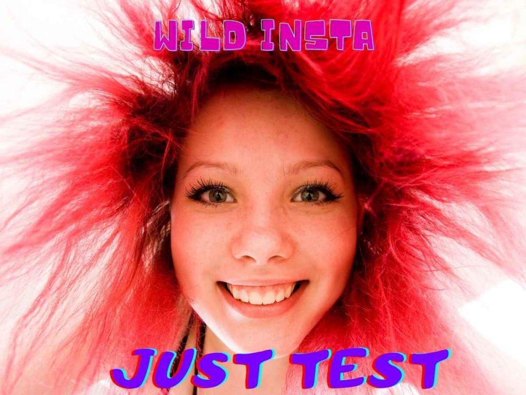 Just Test insta