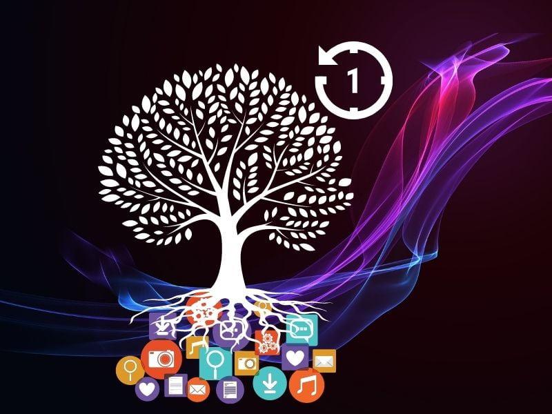 1 Hour To Grow On Social Media